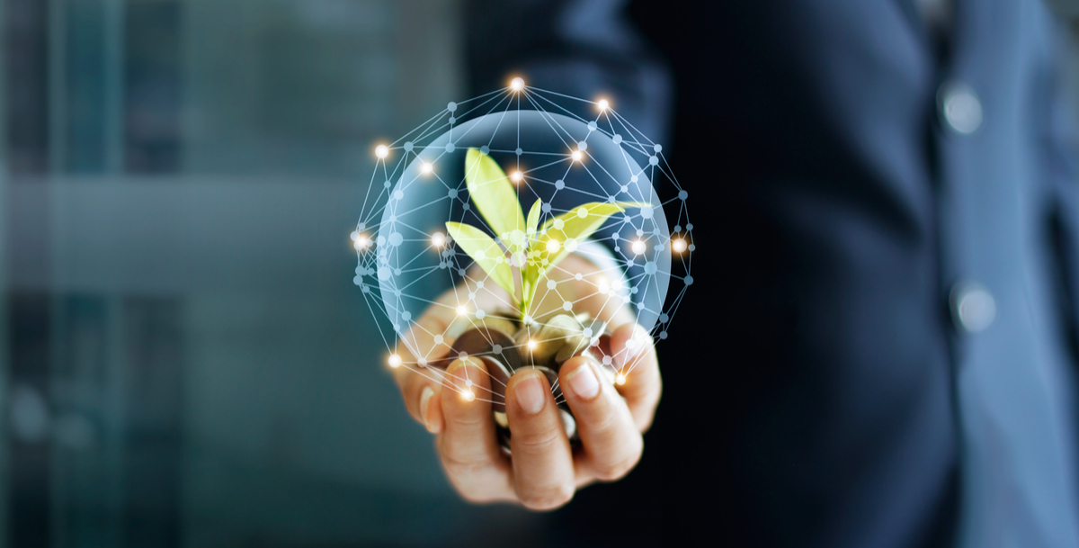 SELLING SPROUTS: THE FUTURE OF DIGITAL LIFE INSURANCE