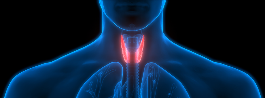 RGAX Life Underwriting Hub - Parathyroid Glands and Disorders